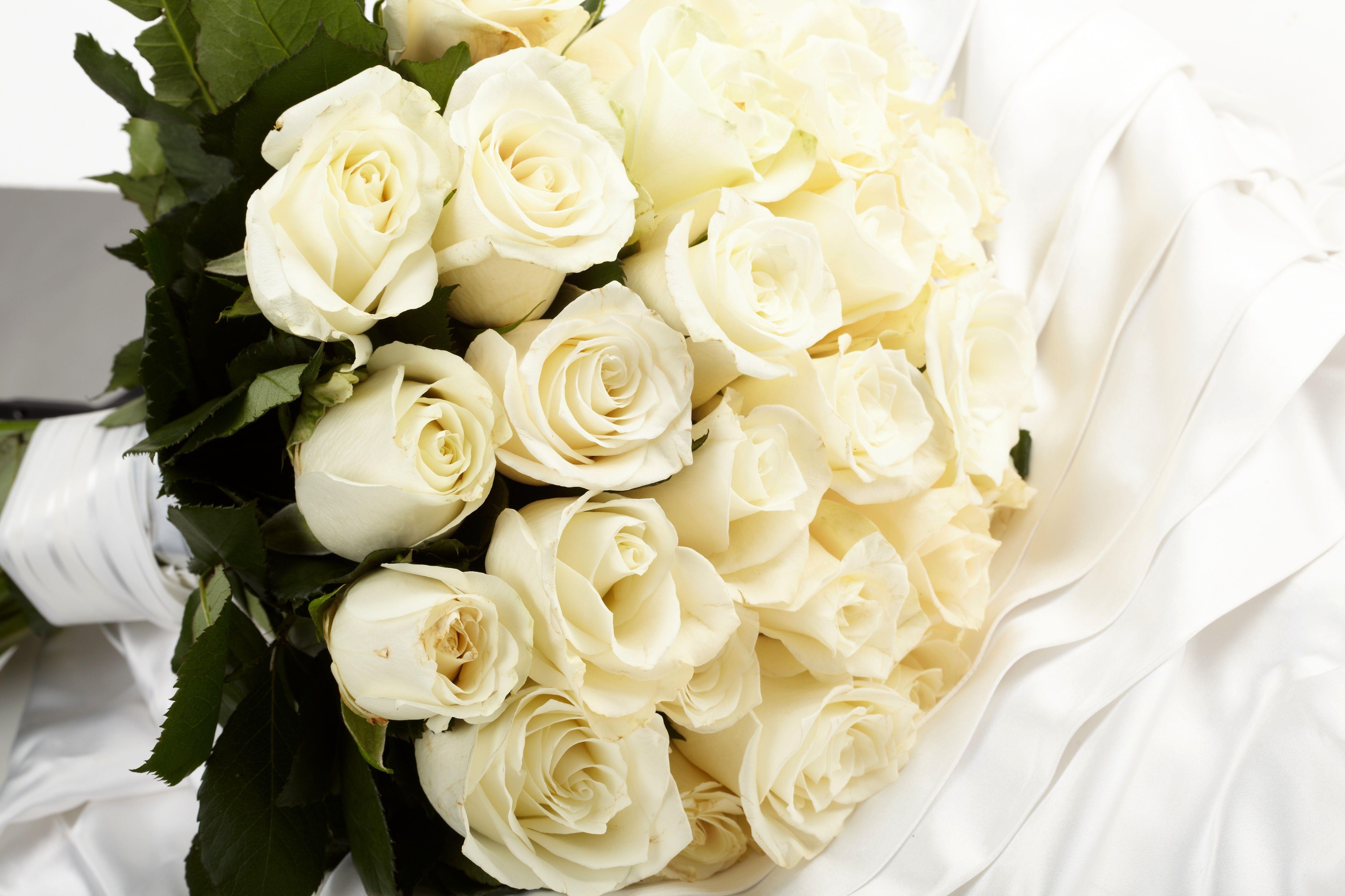 Что обозначают белые розы в подарок девушке 26